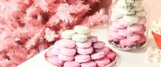 These oreos are a fast, easy, kidpleasing snack! White Chocolate Covered Oreos, Melting White Chocolate, Pink Christmas, Christmas Eve, Christmas Foods, Christmas Things, Christmas Recipes, Pink Party Foods, Candy Sprinkles