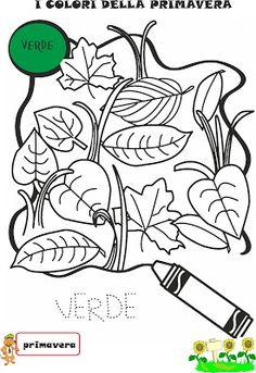 Schede didattiche primavera scuola infanzia 2480 for Primule da colorare