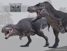 The Tyrannosaurus Rex 3 is fully rigged and the next generation model being the most realistic, detailed, and optimized for better performance than previous versions. The Tyrannosaurus Rex 3 figure includes: Male and Jurassic Park, Jurassic World, Prehistoric Wildlife, Prehistoric Creatures, Dinosaur Drawing, Dinosaur Art, Creature Concept Art, Creature Design, Aliens