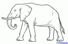 How to Draw Elephants, Step by Step, safari animals, Animals, FREE ...
