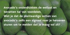 Avocado's onderdrukken de eetlust en bevatten tal van voordelen. Wist je dat de plantaardige vetten van avocado's zelfs een signaal naar je hersenen sturen om te melden dat je maag vol zit?