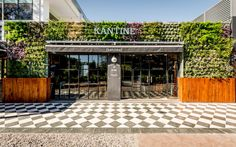 Kantine / Pablo Dellatorre,  Estudio Montevideo