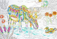37 best Color me your way images on Pinterest | Coloring books ...