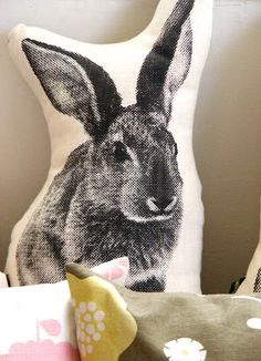 Vamp is open today, Heritage day, Thursday 24 September from 9 30 am until 2 30 pm. Find us at Albert Road, Woodstock, Cape Town. 24 September, Woodstock, Cape Town, Blame, South Africa, Bunny, Shots, African, Animals