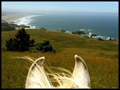 Riding along the coast of Fort Bragg, CA