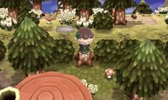 Acnl~ forest