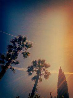 Ciutadella Park, look at the sky!