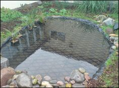 1000 images about pond safety on pinterest pond covers for Garden pond guards