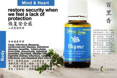 Young Living Thyme 百里香 https://www.youngliving.com/signup/?isoCountryCode=US&sponsorid=1704613&enrollerid=1704613