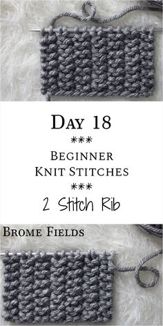 2 Stitch Rib Knit Stitch : Day 18 of the 21 Days of Beginner Knit Stitches : Bro. : 2 Stitch Rib Knit Stitch : Day 18 of the 21 Days of Beginner Knit Stitches : Brome Fields : Beginner Knitting Patterns, Easy Knitting Projects, Knitting Stiches, Loom Knitting, Knitting Designs, Knitting Needles, Hand Knitting, Start Knitting, Knit Stitches For Beginners