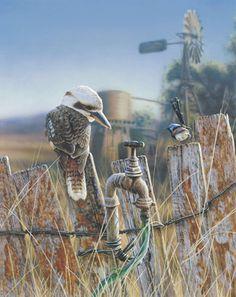 Greg Postle, Fence Sitters from Kingfisher Art And Framing - Buy Online Australian Birds, Australian Artists, Tui Bird, Australian Photography, Sketch Painting, Cool Art Drawings, Wildlife Art, Bird Art, Art Google