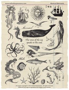 Mystical Mermaids - A collection of 26 unmounted rubber stamps with a nautical, mermaid theme. Rubber stamps are traditional red rubber and are