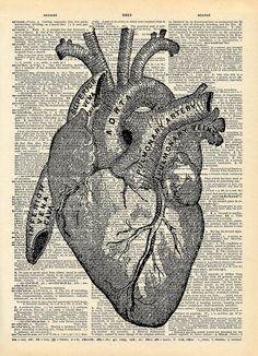 "Vintage Dictionary Print ""Anatomical Heart"" Upcycled Recycled Antique Book Print Love Heart Medical Gothic. $10.00, via Etsy."
