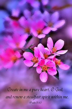Psalm 51:10.....reate in me a pure heart, O God,  and renew a steadfast spirit within me.
