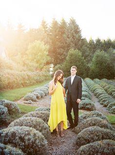 Red Ridge Farms + Olive Mill
