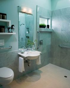 8 Small Bathrooms That Shine   http://ageinplace.com/at-home/home-remodeling/small-bathrooms-design/