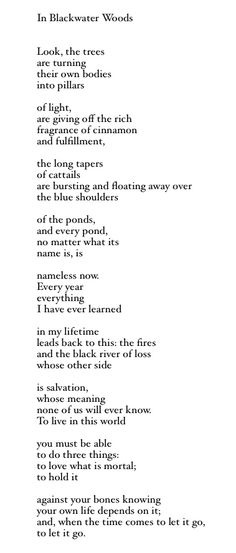 In Blackwater Woods - Mary Oliver