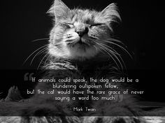 If animals could speak, the dog would be a blundering outspoken fellow; but the cat would have the rare grace of never saying a word too much.