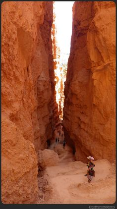 Walking the trails at Bryce Canyon National Park, #Utah.  #boomer #travel