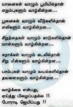 Tamil Motivational Quotes, Inspirational Quotes, Motivational Pictures, English Words, English Quotes, Intj, True Quotes, Best Quotes, Qoutes
