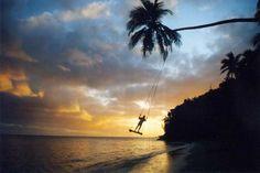 Swing. The Beachouse, Fiji, Coral Coast
