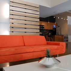 Wall Panel Room Divider Design, Pictures, Remodel, Decor and Ideas