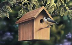 Great tips of what kind of birdhouses attract certain species of birds from houseplansandmore.com