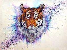 Акварельный эскиз тигра