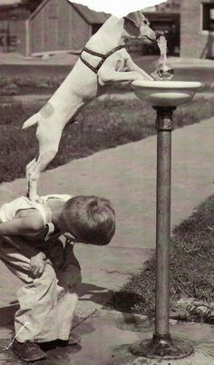 drinking fountain urban design - Google Search
