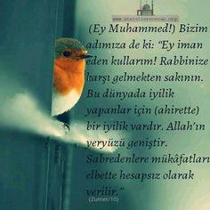 #İslam #ayet #hadis #sabır #cennet