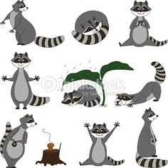 Vektorgrafik : Black and white set, cartoon raccoons. Vector