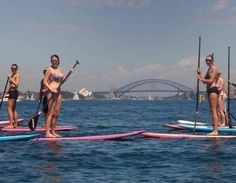 Stand up paddle board rose bay