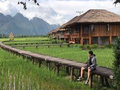 Bridge Village House Design, Village Houses, Bungalows, Jungle House, Villas, Bamboo House, Garden Design Plans, Modern Architects, Farm Stay