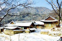 봉정사 설경((2012년)
