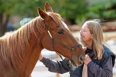 Thoroughbred named Red is available for adoption at Best Friends Sanctuary in Kanab, Utah | Best Friends Animal Society