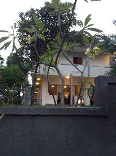The village Bali, Aquarium, Pride, Villa, Tropical, Plants, Aquarius, Fish Tank, Flora