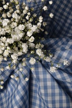 I love Baby's Breath! Fine Art Photograph Baby's Breath and Gingham by TheMemorableImage Love Blue, Blue And White, Narcisse, Country Blue, Gypsophila, White Cottage, Blue Gingham, Wizard Of Oz, My Favorite Color