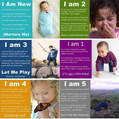 Great descriptions of what to expect from birth to age 5!