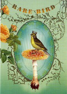 Rare Bird  Artwork by Anahata Joy Katkin  PAPAYA