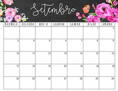 Planner Mensal e Semanal 2017 ❤️