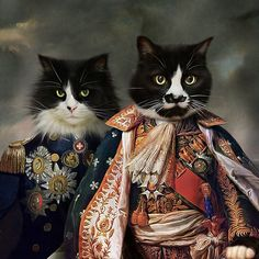 Pompous Pets // Cats In Paintings Crazy Cat Lady, Crazy Cats, Image Chat, Gatos Cats, Fancy Cats, Cat People, Vintage Cat, Beautiful Cats, Cool Cats