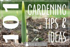 Mom with a PREP | 101+ Gardening Ideas & Tips - from planning to planting to growing to harvesting, ideas and tips for you to grow your own ...