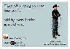 Rodeo. Ropers heelers!
