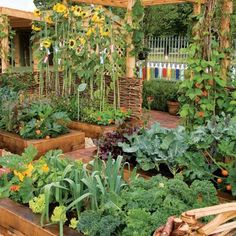 Intensive Gardening: Grow More Food in Less Space (With the Least Work!) From MOTHER EARTH NEWS.