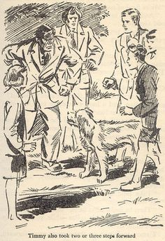 Timmy, mutt hero of Enid Blyton's Famous Five books.