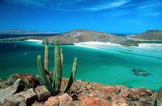 La paz es la ciudad capital del estado mexicano de Baja California