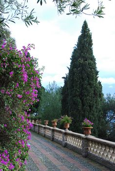 Flower-lined path, Taormina Italy