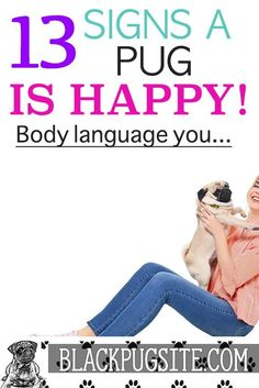 hHow do I know if my pug is happy? Easy to spot signs that your dog is telling you they are happy without you having to try. Black Pug Puppies, English Bulldog Puppies, Lab Puppies, English Bulldogs, Terrier Puppies, French Bulldogs, Boston Terrier, Lola The Pug, Pug Facts