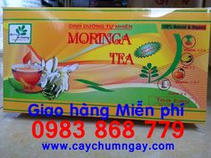 http://caynongaydat.vn http://caychumngay.com http://caychumngayvn.com http://caychumngay.com.vn