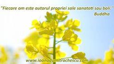 Programul lunar al sanatatii: Ziua 1 Affirmations, Herbs, Day, Flowers, Plants, Florals, Herb, Planters, Positive Affirmations